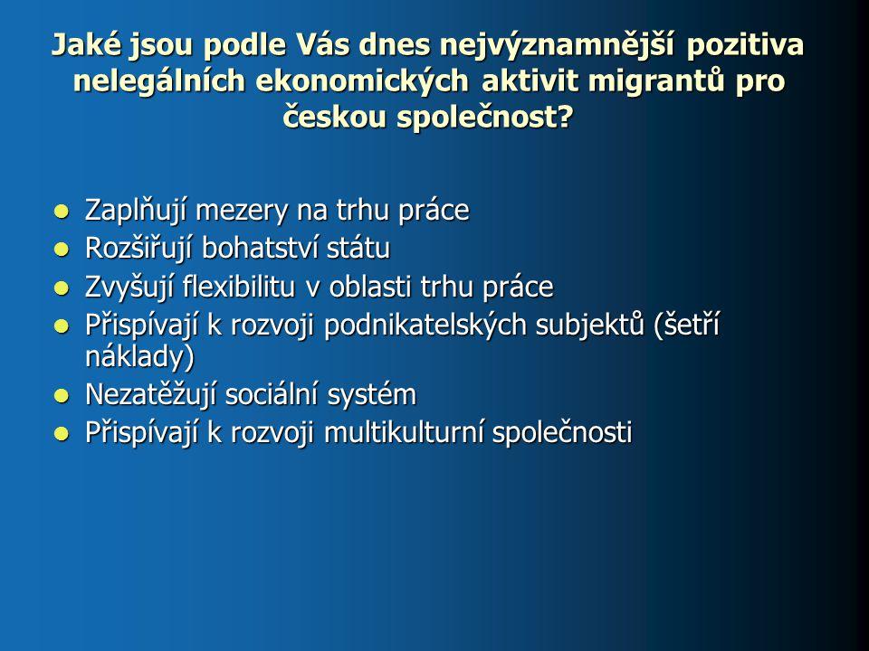 Jaké jsou podle Vás dnes nejvýznamnější pozitiva nelegálních ekonomických aktivit migrantů pro českou společnost