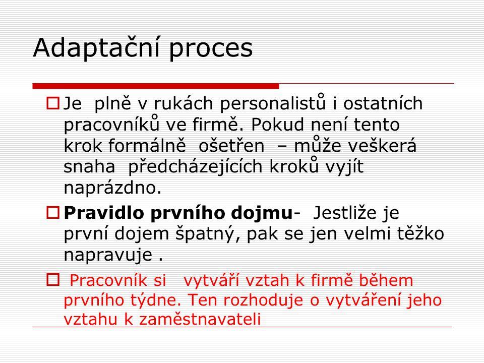Adaptační proces