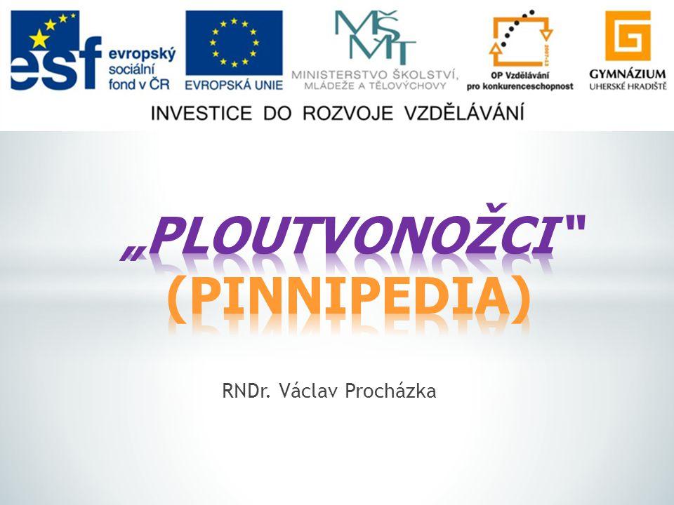 """PLOUTVONOŽCI (PINNIPEDIA)"