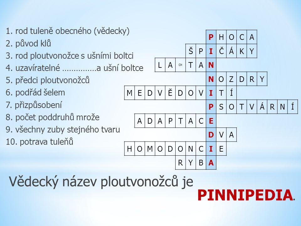 Vědecký název ploutvonožců je PINNIPEDIA.