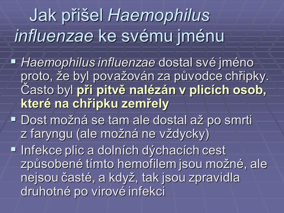 Jak přišel Haemophilus influenzae ke svému jménu