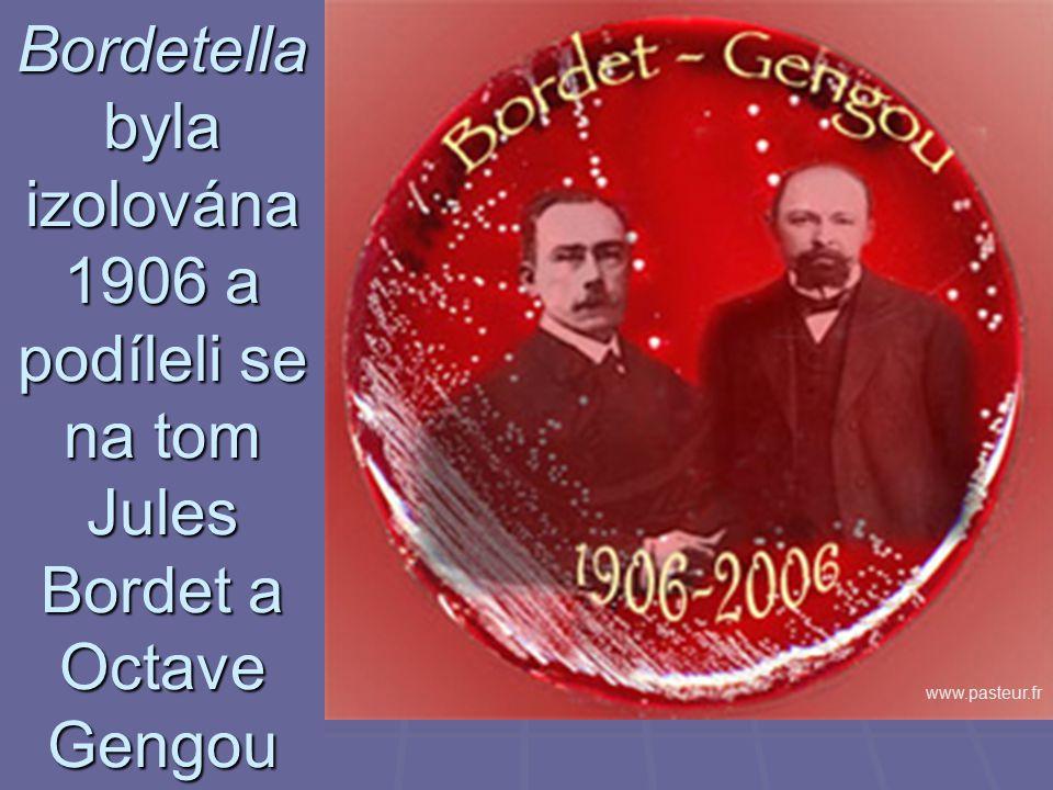 Bordetella byla izolována 1906 a podíleli se na tom Jules Bordet a Octave Gengou