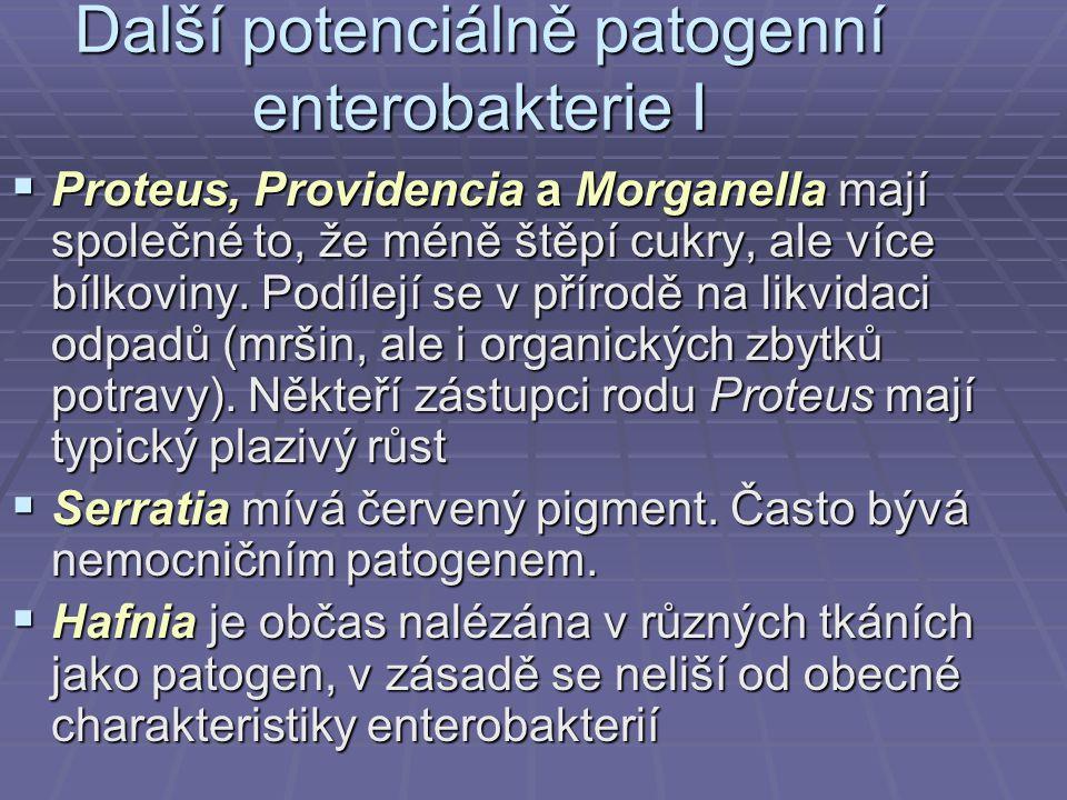 Další potenciálně patogenní enterobakterie I