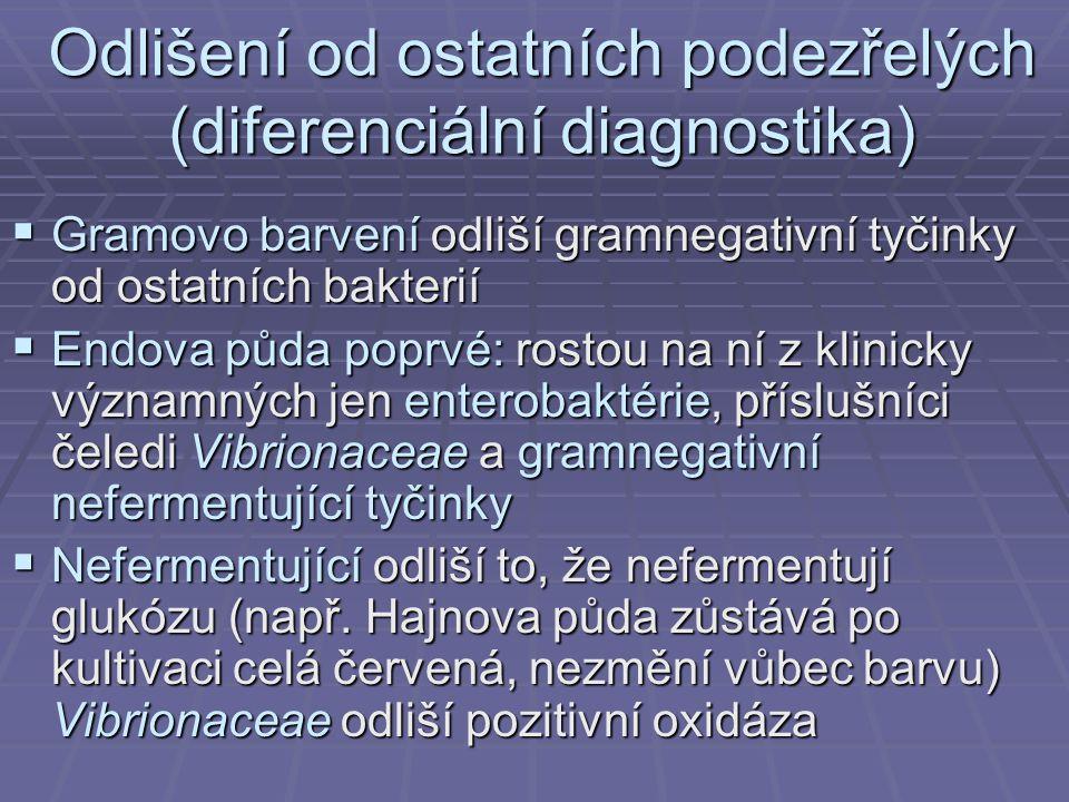 Odlišení od ostatních podezřelých (diferenciální diagnostika)