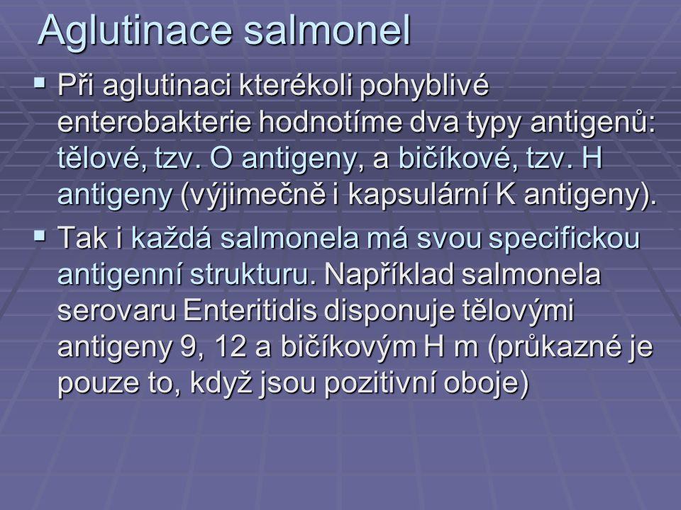 Aglutinace salmonel