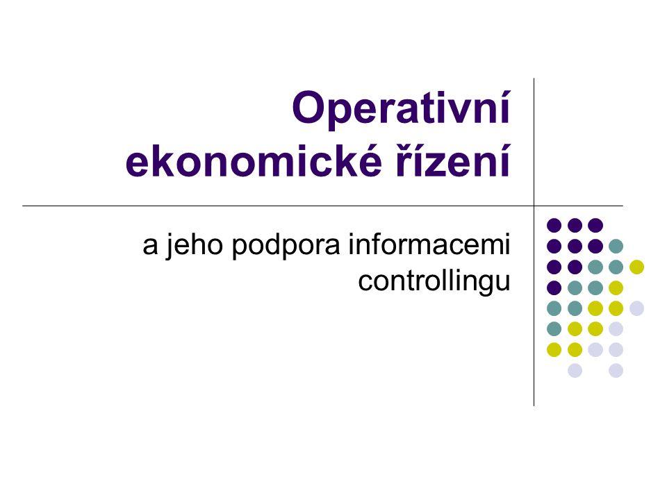 Operativní ekonomické řízení