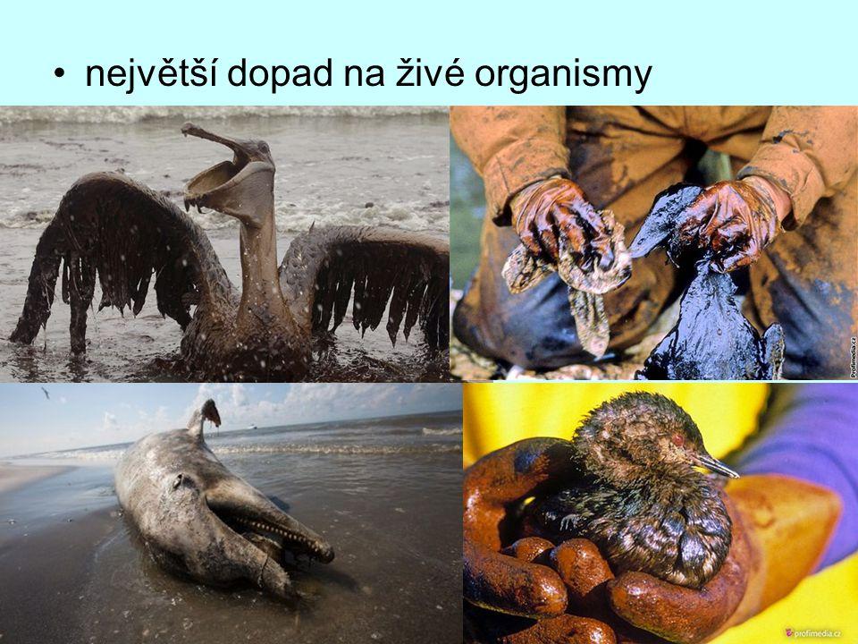 největší dopad na živé organismy