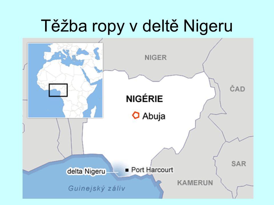 Těžba ropy v deltě Nigeru