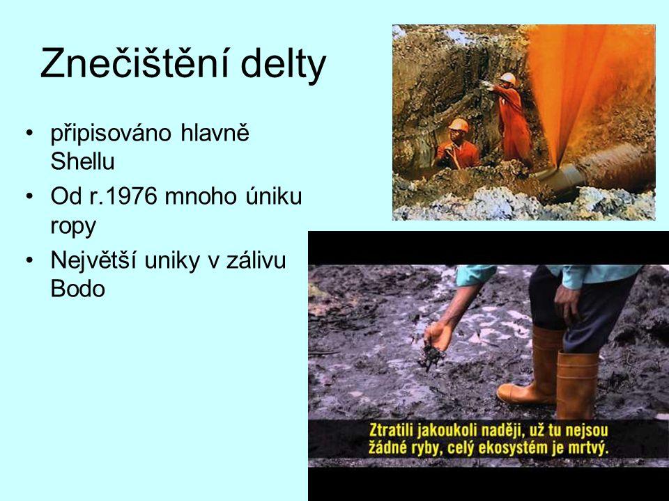 Znečištění delty připisováno hlavně Shellu Od r.1976 mnoho úniku ropy