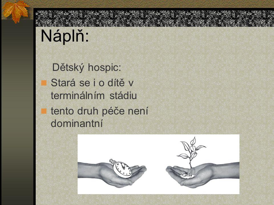 Náplň: Dětský hospic: Stará se i o dítě v terminálním stádiu