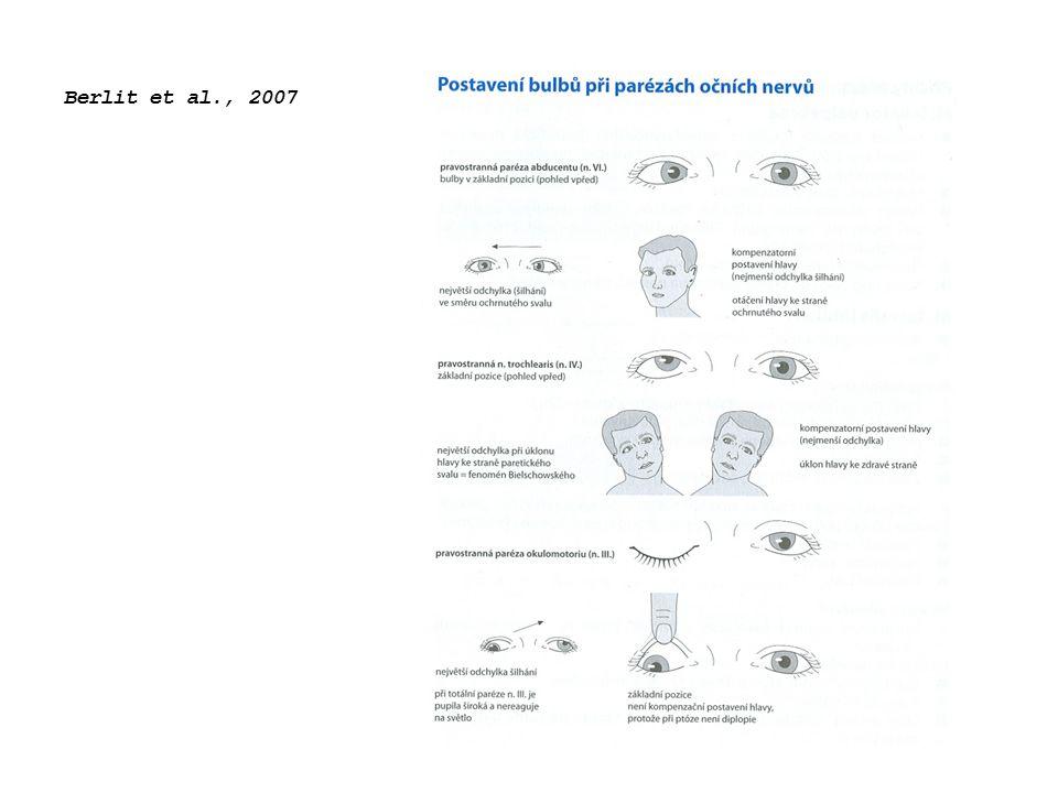 Berlit et al., 2007