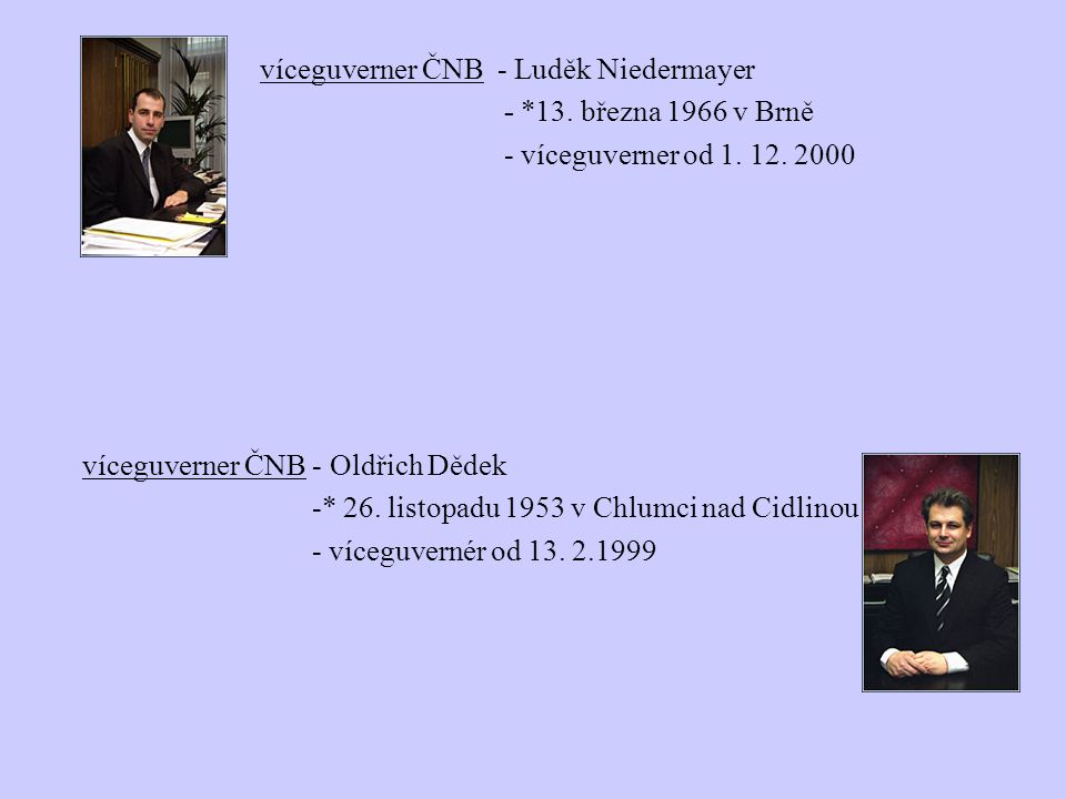 víceguverner ČNB - Luděk Niedermayer