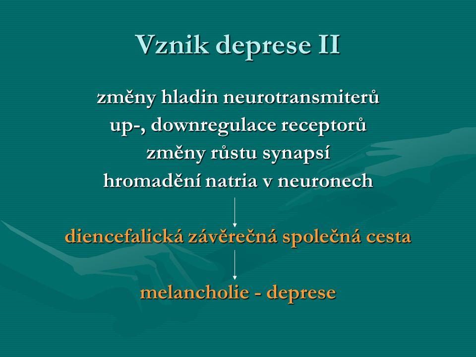 Vznik deprese II změny hladin neurotransmiterů