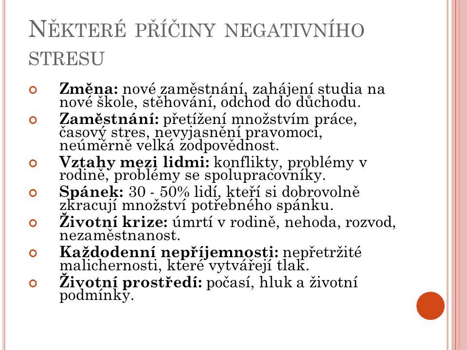 Některé příčiny negativního stresu