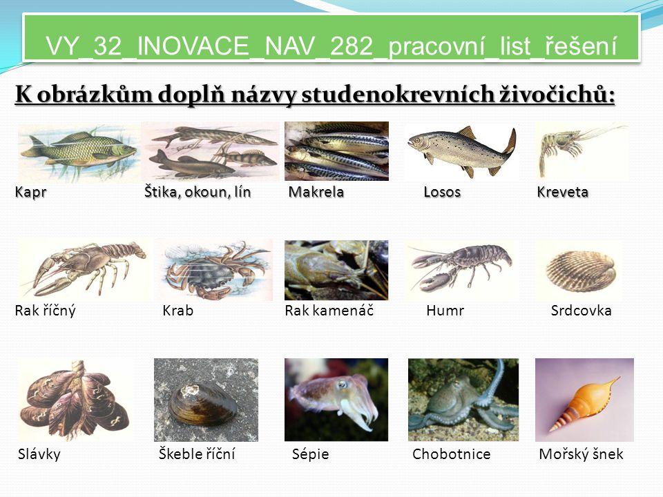 VY_32_INOVACE_NAV_282_pracovní_list_řešení