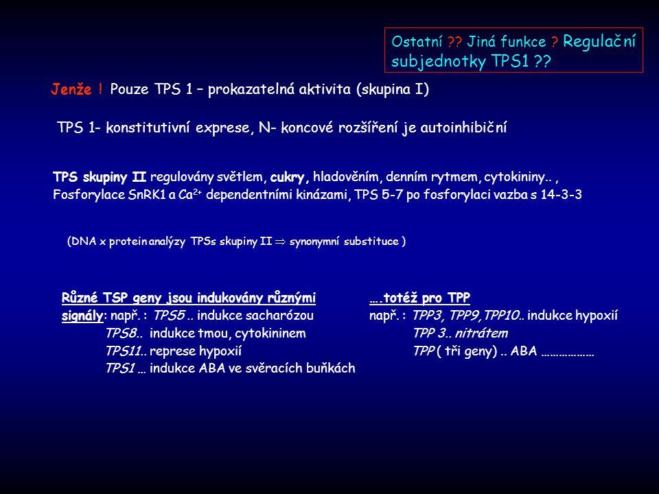 Ostatní Jiná funkce Regulační subjednotky TPS1