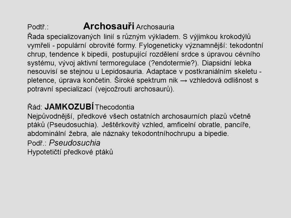 Podtř.: Archosauři Archosauria