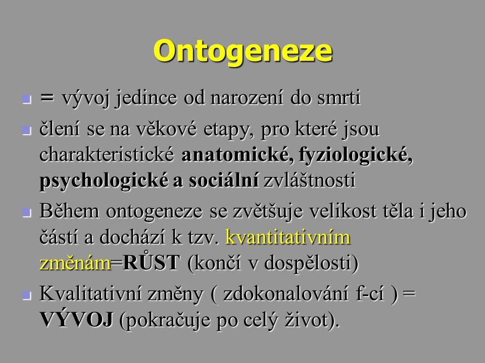 Ontogeneze = vývoj jedince od narození do smrti
