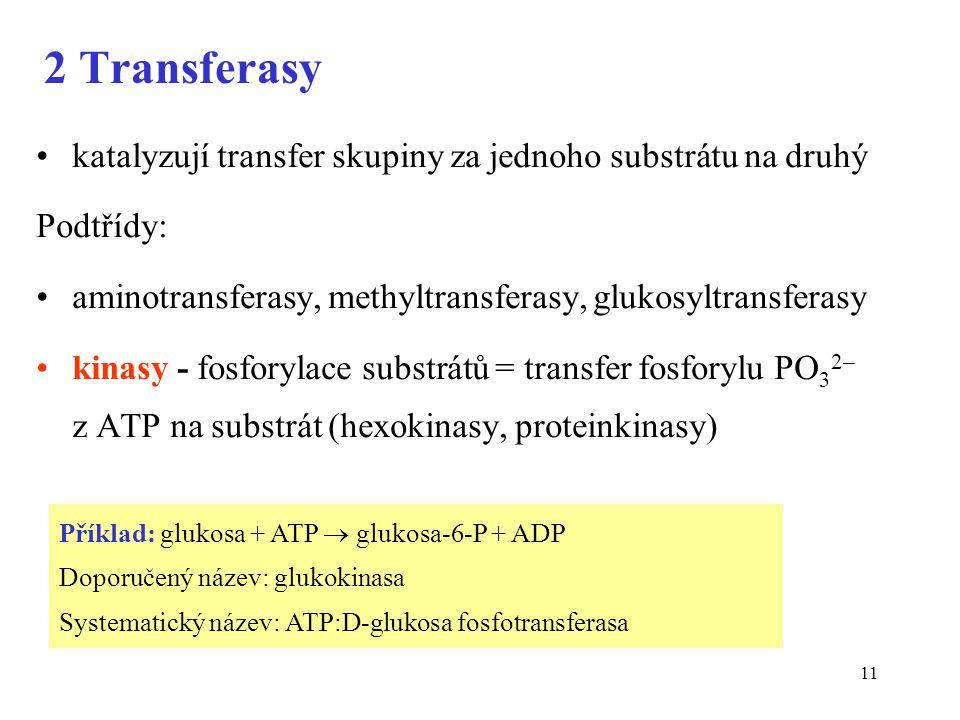 2 Transferasy katalyzují transfer skupiny za jednoho substrátu na druhý. Podtřídy: aminotransferasy, methyltransferasy, glukosyltransferasy.