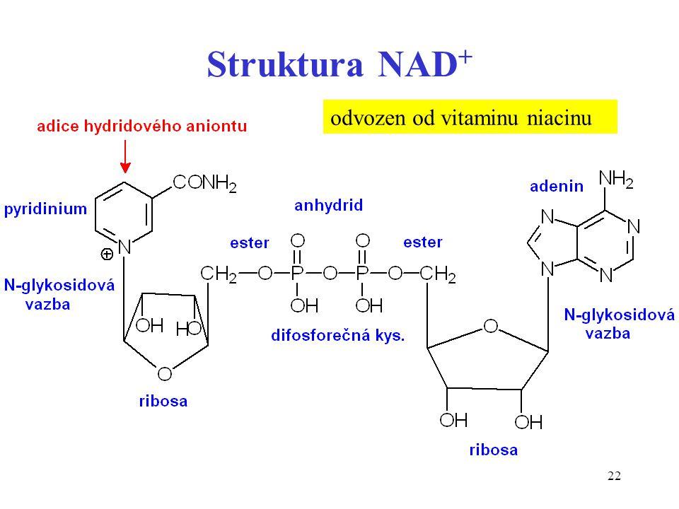 Struktura NAD+ odvozen od vitaminu niacinu