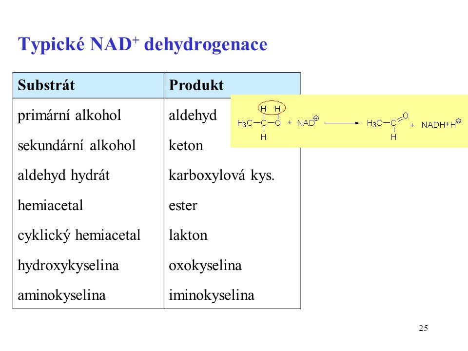 Typické NAD+ dehydrogenace
