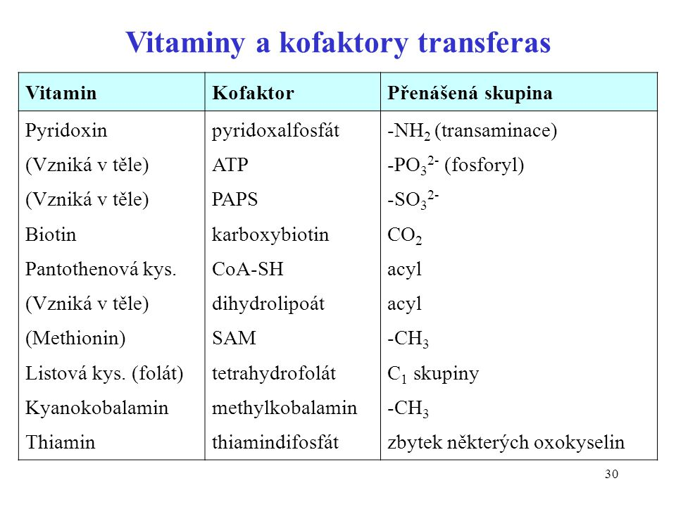 Vitaminy a kofaktory transferas