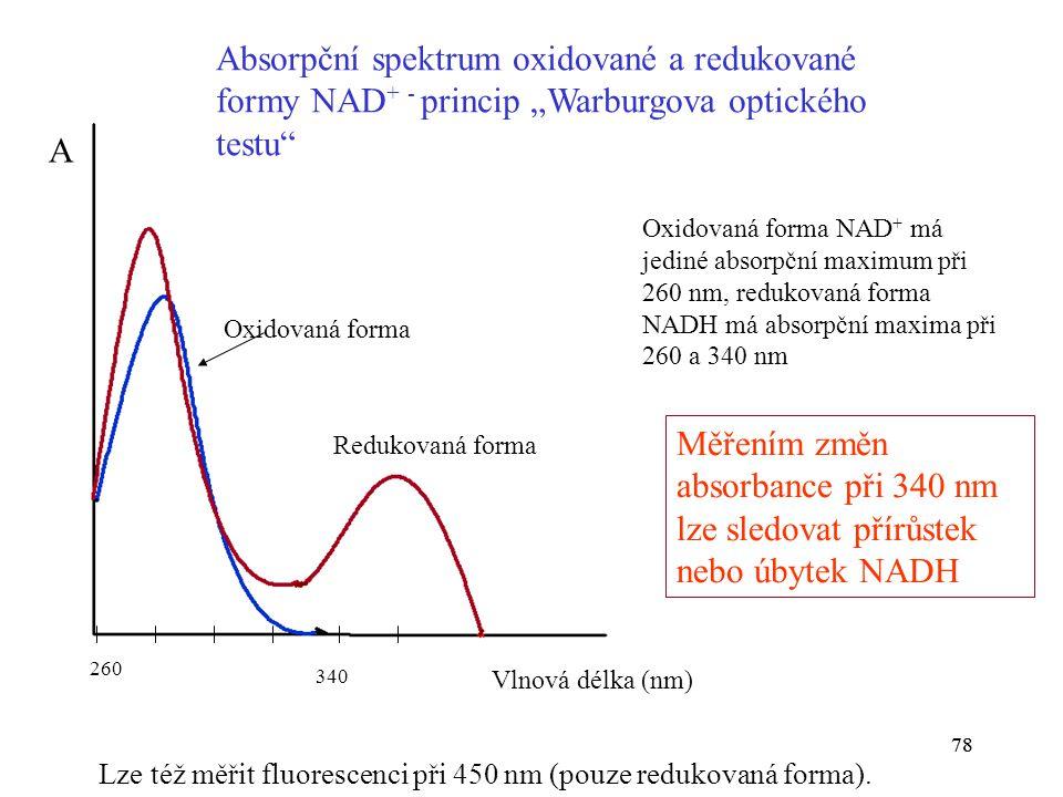 """Absorpční spektrum oxidované a redukované formy NAD+ - princip """"Warburgova optického testu"""