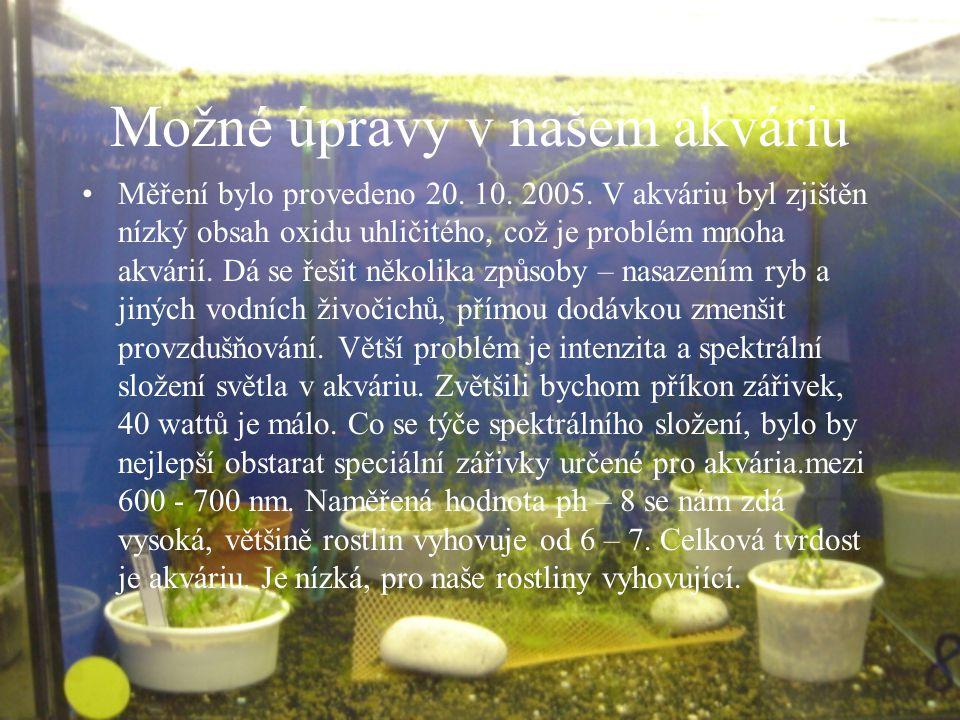 Možné úpravy v našem akváriu