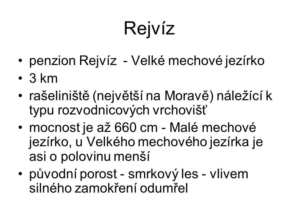 Rejvíz penzion Rejvíz - Velké mechové jezírko 3 km
