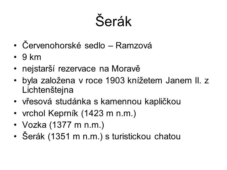 Šerák Červenohorské sedlo – Ramzová 9 km nejstarší rezervace na Moravě