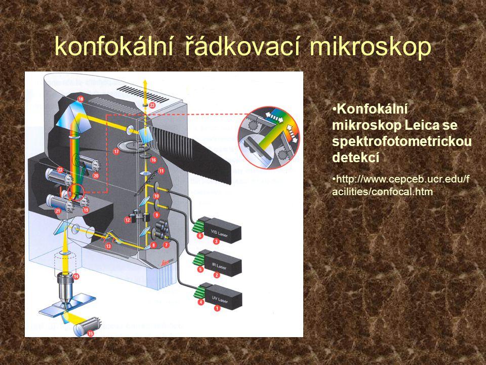 konfokální řádkovací mikroskop