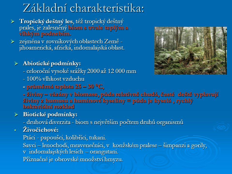 Základní charakteristika: