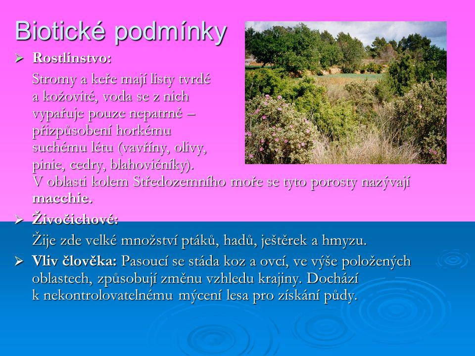 Biotické podmínky Rostlinstvo: