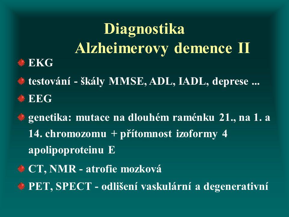 Diagnostika Alzheimerovy demence II