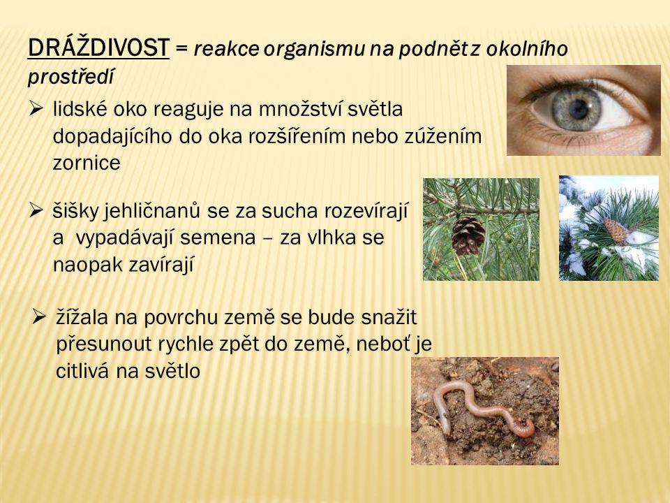 DRÁŽDIVOST = reakce organismu na podnět z okolního prostředí