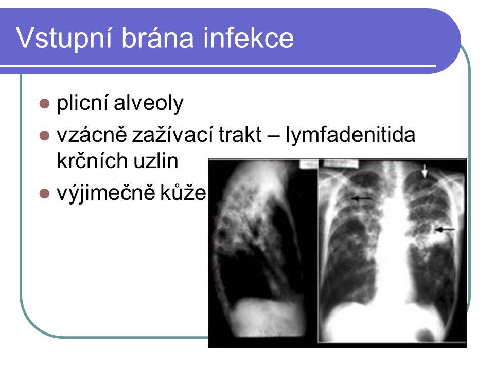 Vstupní brána infekce plicní alveoly