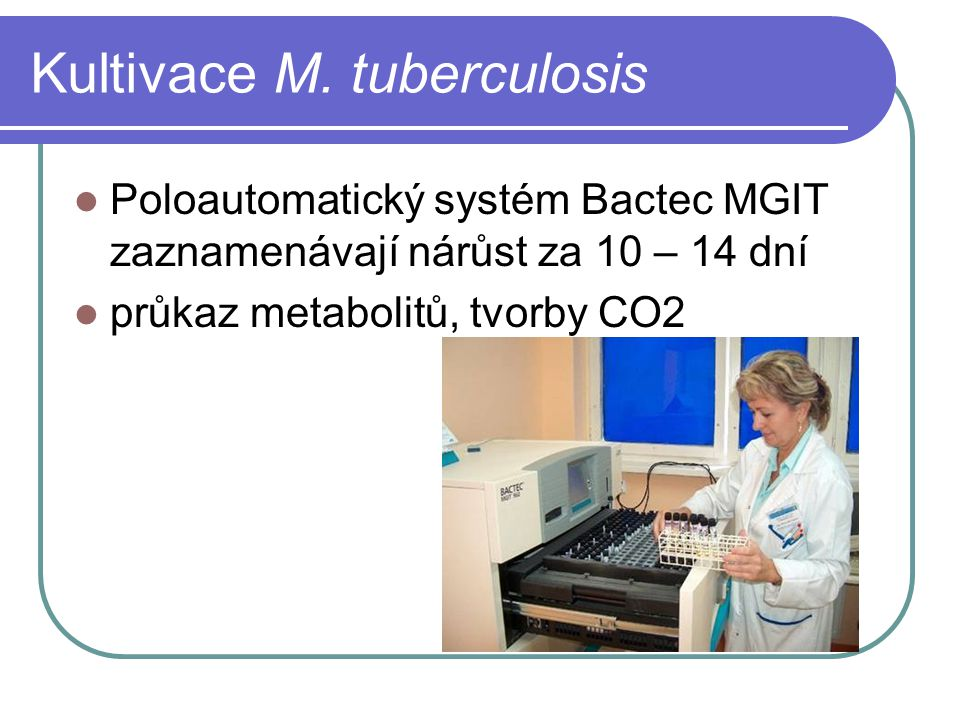 Kultivace M. tuberculosis