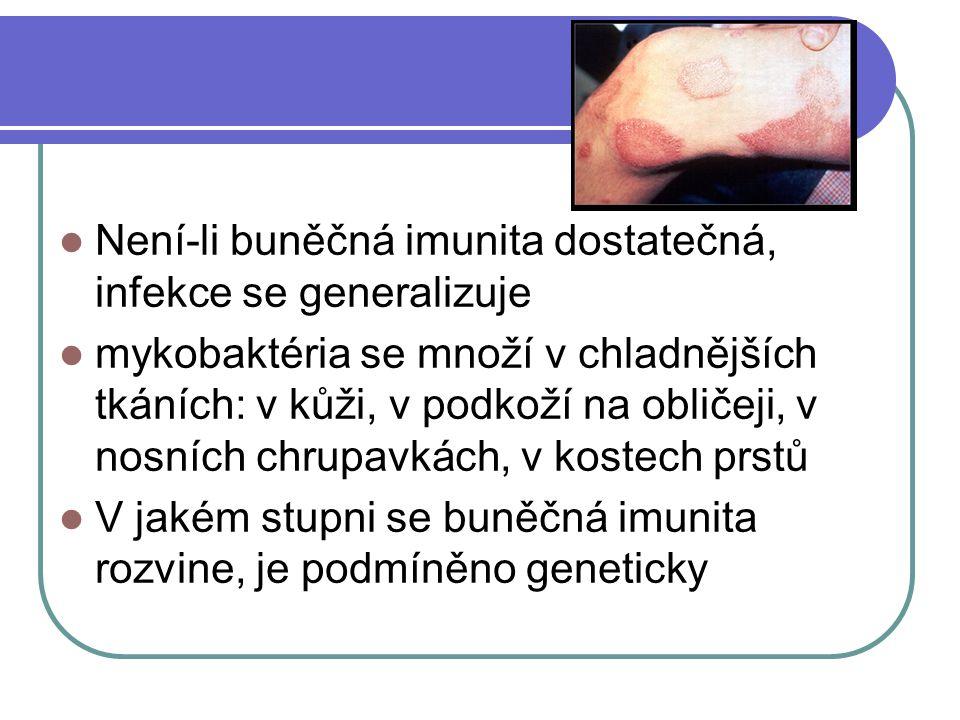 Není-li buněčná imunita dostatečná, infekce se generalizuje