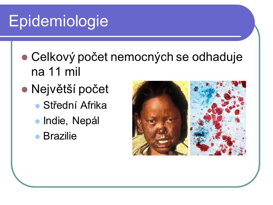 Epidemiologie Celkový počet nemocných se odhaduje na 11 mil