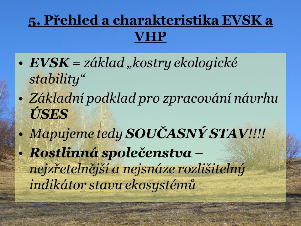 5. Přehled a charakteristika EVSK a VHP
