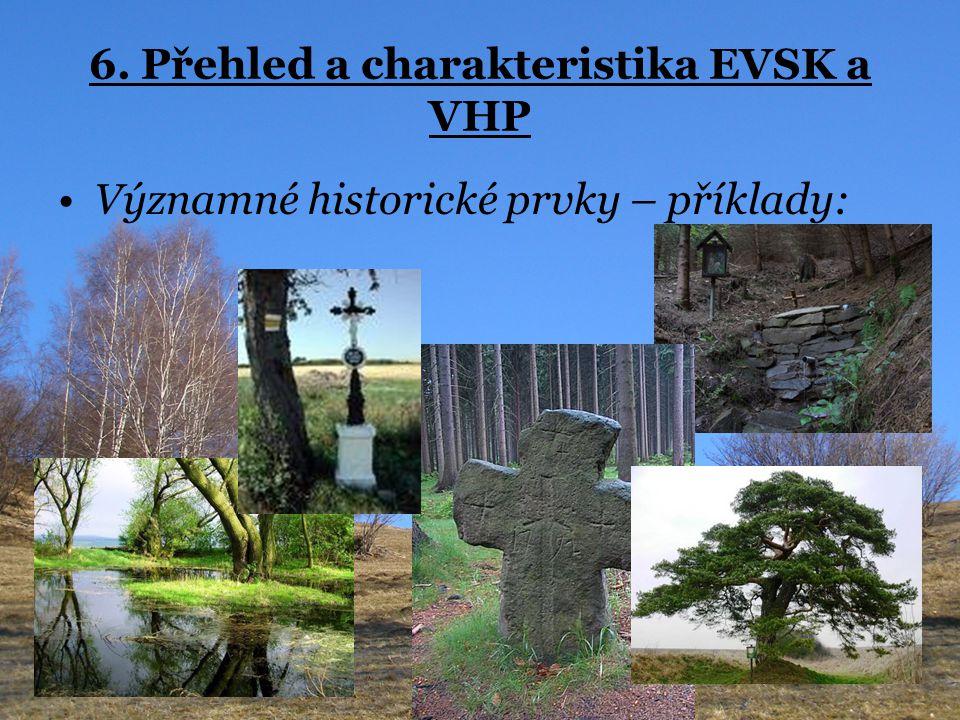 6. Přehled a charakteristika EVSK a VHP