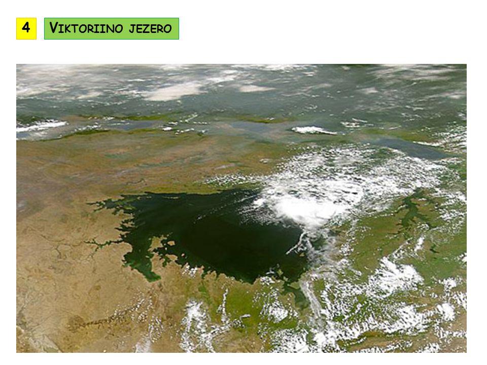 4 Viktoriino jezero