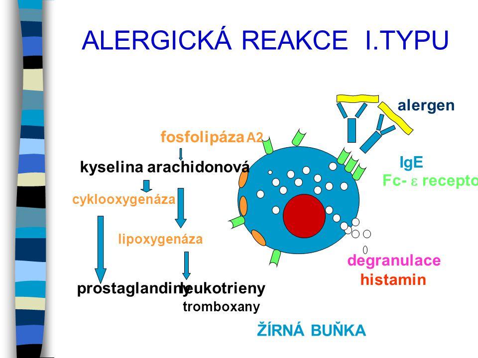 ALERGICKÁ REAKCE I.TYPU