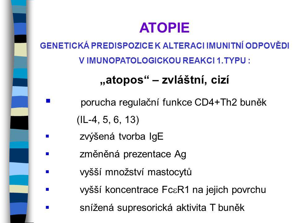 ATOPIE porucha regulační funkce CD4+Th2 buněk