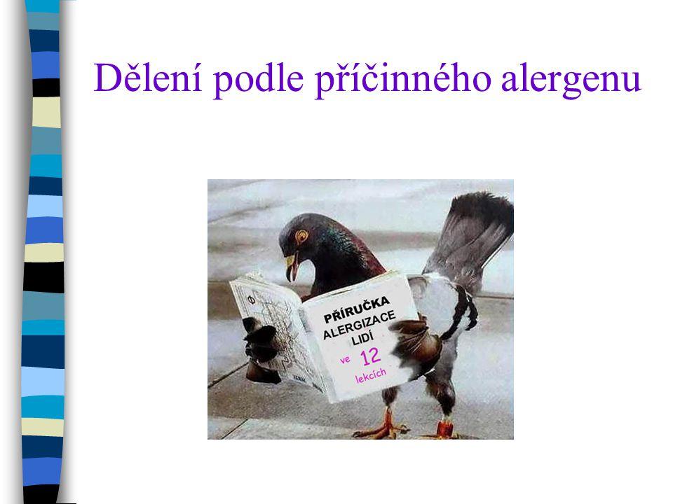 Dělení podle příčinného alergenu