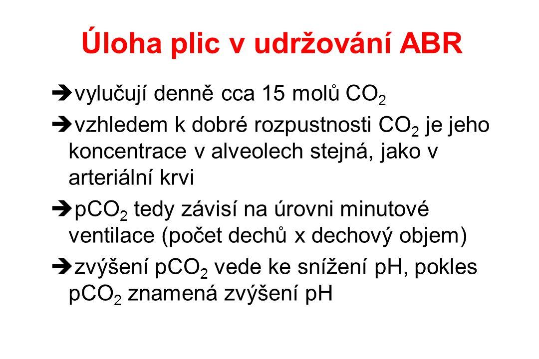 Úloha plic v udržování ABR