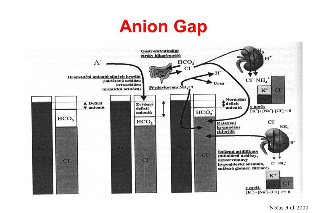 Anion Gap Nečas et al. 2000