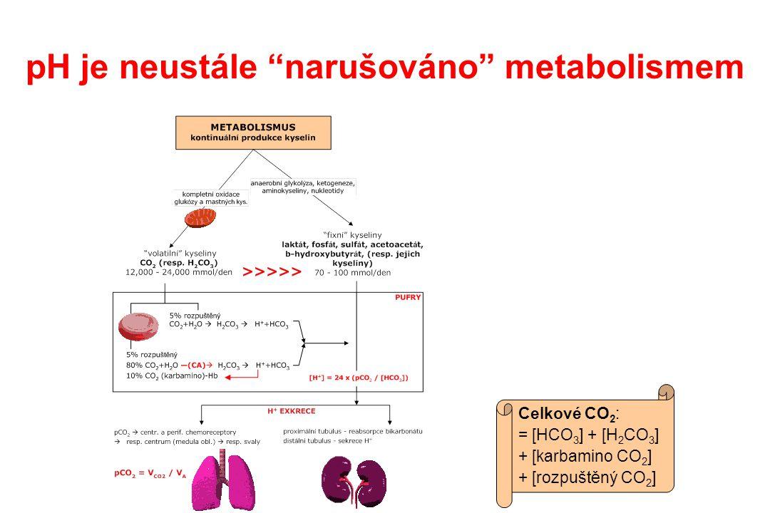 pH je neustále narušováno metabolismem