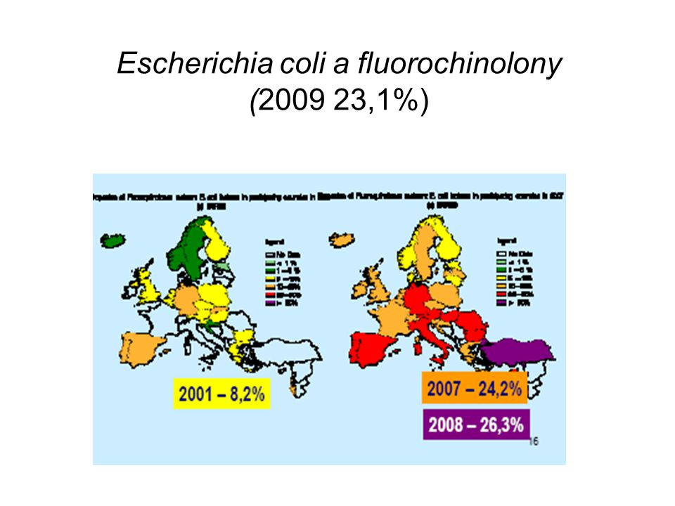 Escherichia coli a fluorochinolony (2009 23,1%)