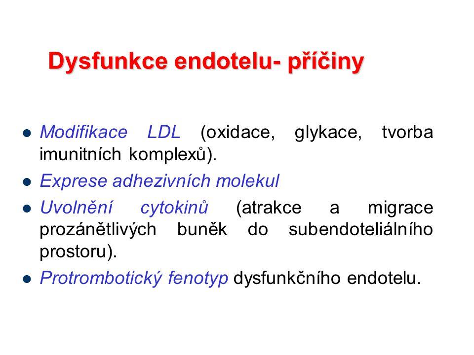 Dysfunkce endotelu- příčiny